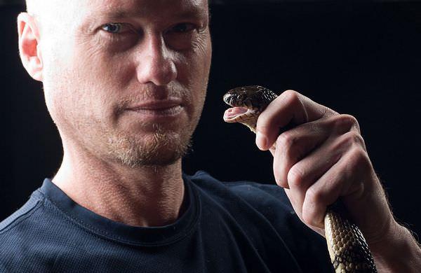 К чему снится укус змеи и стоит ли насторожиться?